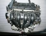 Двигатель  Ford FOCUS/C-MAX QQDB/A